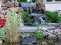 waterfalls and water garden